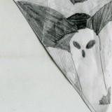 fantome_sur_la_montagne.jpg