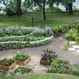 le_jardin_paradis_de_lili_mai_2007_040.jpg