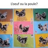 15-Poules