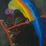 le perroquet des contes de fées