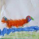 oiseau - grégoire