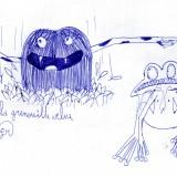 la grenouille velue