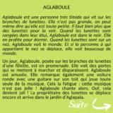 Copie de Copie de Agaboule d'Anouk